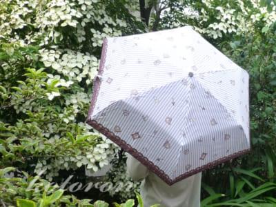 大人かわいい折りたたみ傘♪