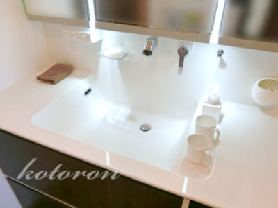 [Web内覧会55][洗面所6]洗面台のキレイを保つ掃除方法&冬の菜園